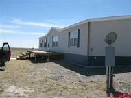 16675 San Juan Lane Saguache CO, 81149