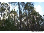 477 Ac Highway Cr 229 Lawtey FL, 32058