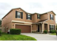 1317 Canyon Oaks Drive Brandon FL, 33510
