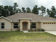 43 Matricaria Ct. Homosassa FL, 34446