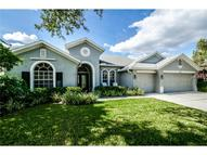 14636 Coral Berry Dr Tampa FL, 33626