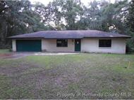 6291 Mike Ln Webster FL, 33597