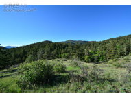 1375 Streamside Dr Glen Haven CO, 80532