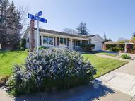 1311 Belshaw Dr Mountain View CA, 94040
