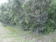 0 County Road 143 2x 468 Alvin TX, 77511