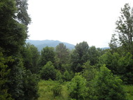 321 Moody Cove Road Weaverville NC, 28787