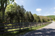 62.95 Ac Macedonia Road Cookeville TN, 38506
