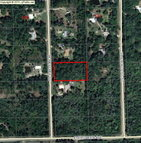 1761 Honeytree Street Bunnell FL, 32110