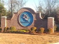 151 Wood Duck Drive 45 Gilbert SC, 29054