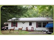 203 Tanager Rd Lackawaxen PA, 18435