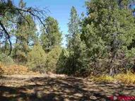 2240 Crooked Rd Pagosa Springs CO, 81147