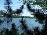 Lot 1 Perch Lake Road Winter WI, 54896