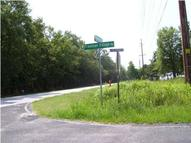 0 Freeman Village Road Hollywood SC, 29449
