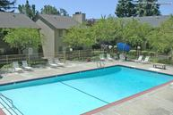 Crestview Terrace Apartments Hayward CA, 94544