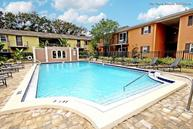 Monroe Of SoHo LLC Apartments Tampa FL, 33629