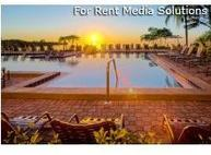 Cove, The Apartments Tampa FL, 33611