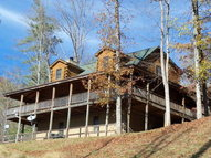 1046 Smoky Cove Whittier NC, 28789