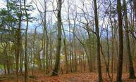 Lot 42 & 43 Maysville Lane Powell TN, 37849