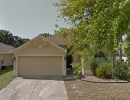 10220 Oasis Palm Dr Tampa FL, 33615