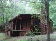 3237 Bear Moutian Ln Sevierville TN, 37876