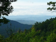 $150/Night, $800/Week, $2,000/Month - Mason Way Brasstown NC, 28902
