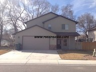 305 Carriage Hills Court Grand Junction CO, 81503