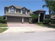 18110 Diamond Cove  Ct Tampa FL, 33647
