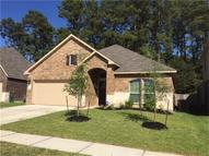 22526 Forbes Field Trl Spring TX, 77389