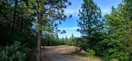 Custom Homesite 275  Meadow Vista CA, 95722