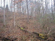 Lot 18 Spring Road Huntington WV, 25705