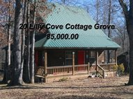 20 Lilly Cove Pickwick Dam TN, 38365