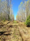 Lot 2 County Line Rd Brule WI, 54820