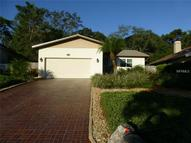 50 Gulfwinds Drive W Palm Harbor FL, 34683