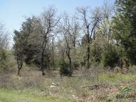 Lot 378b Timber Ridge Larue TX, 75770