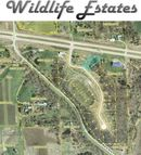 1523 Wildlife Drive Blue Grass IA, 52726