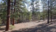 Lot 17 Roadrunner Drive Ramah NM, 87321