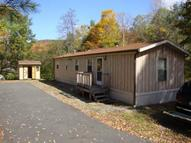1042 Huntley Hollow Road Downsville NY, 13755