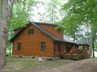 5564 Whalen Lake Baldwin MI, 49304