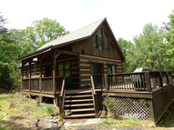 295 Little Bell Dr Traphill NC, 28685