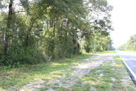 County Road 341 Bell FL, 32619