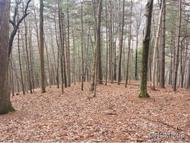 Lot 9  Brookwood Road Asheville NC, 28804