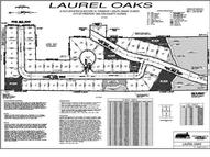 Lot 1 Laurel Oaks Drive Freeport FL, 32439