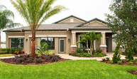 115 Dakota Hill Dr Seffner FL, 33584