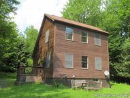 222 Hutchin Hill Road Bearsville NY, 12409