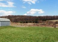 Lot 1 Bodle Road Wyoming PA, 18644