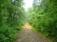 Lot 1 Jim'S Farm Road Weaverville NC, 28787