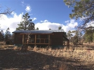 24 Doe Run Laguna Vista Rutheron NM, 87551