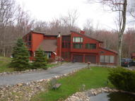 1207 Sky View Dr. Scotrun PA, 18355
