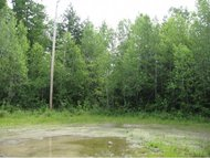Lot 49 Forest View Dr Effingham NH, 03882