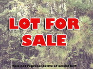 Lot 11 Klopfer Rd Juliette GA, 31046